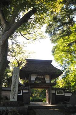 稲田の草庵